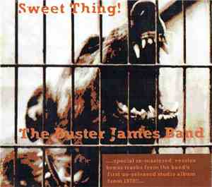 The Buster James Band - Sweet Thing!
